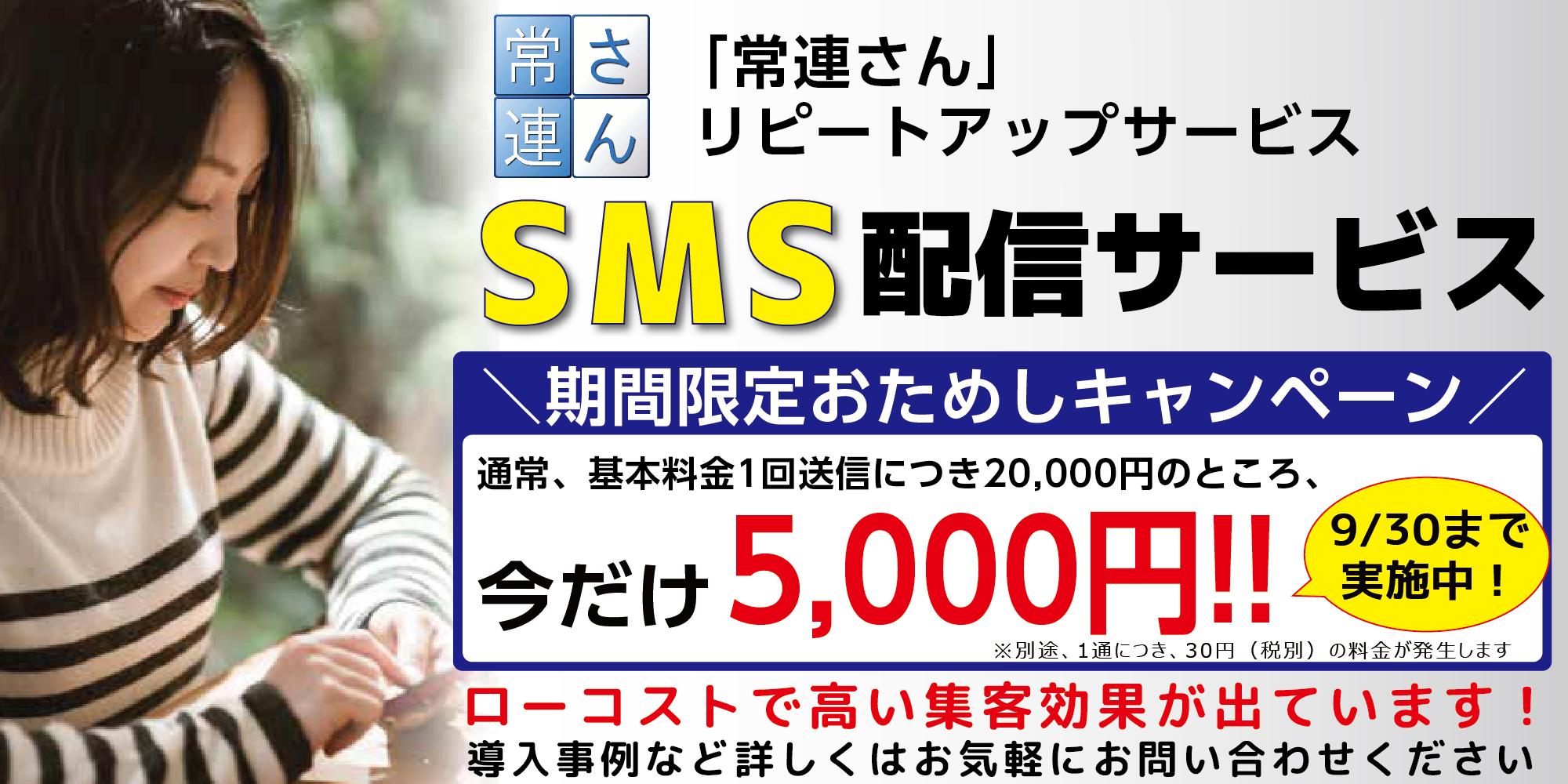 campaign_mini